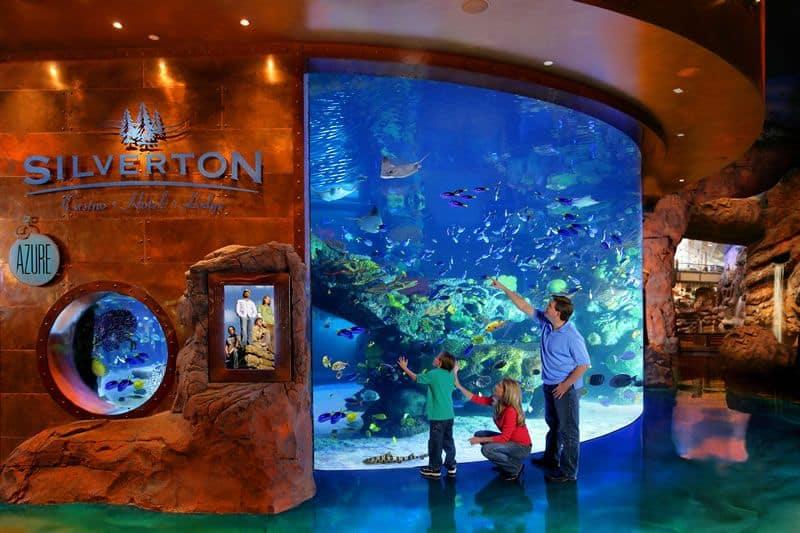 Silverton Aquarium Mermaids